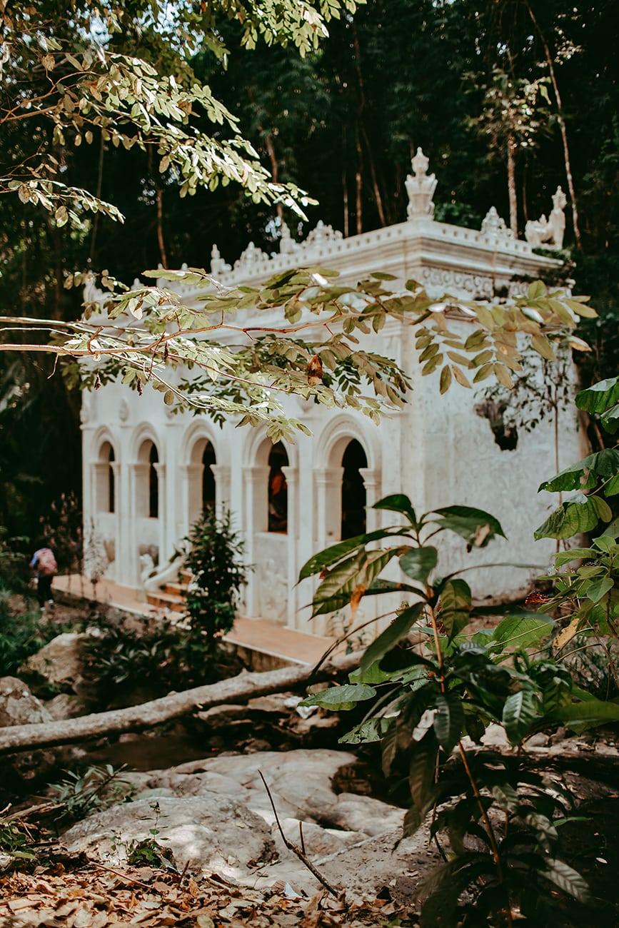 A monk's trail, Chiangmai, Thailand
